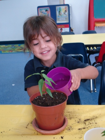 child_watering_plant